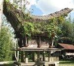 INDONESIA (8)