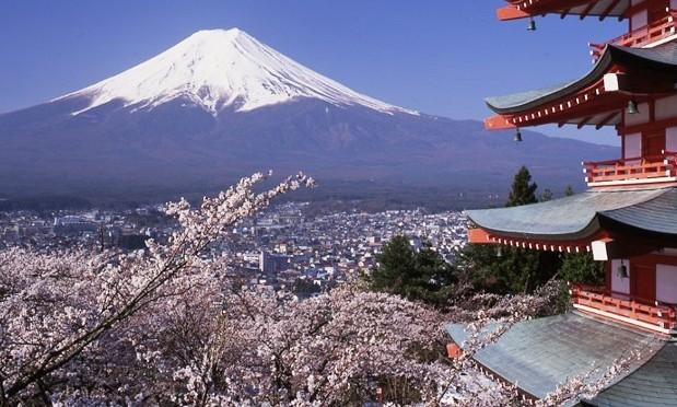 Japan wants domestic travel restraints