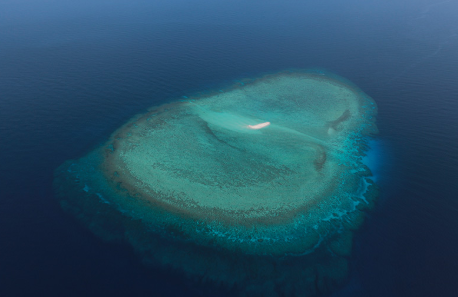 Ecological protection facilities on Nansha Islands